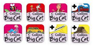 Big cat collins